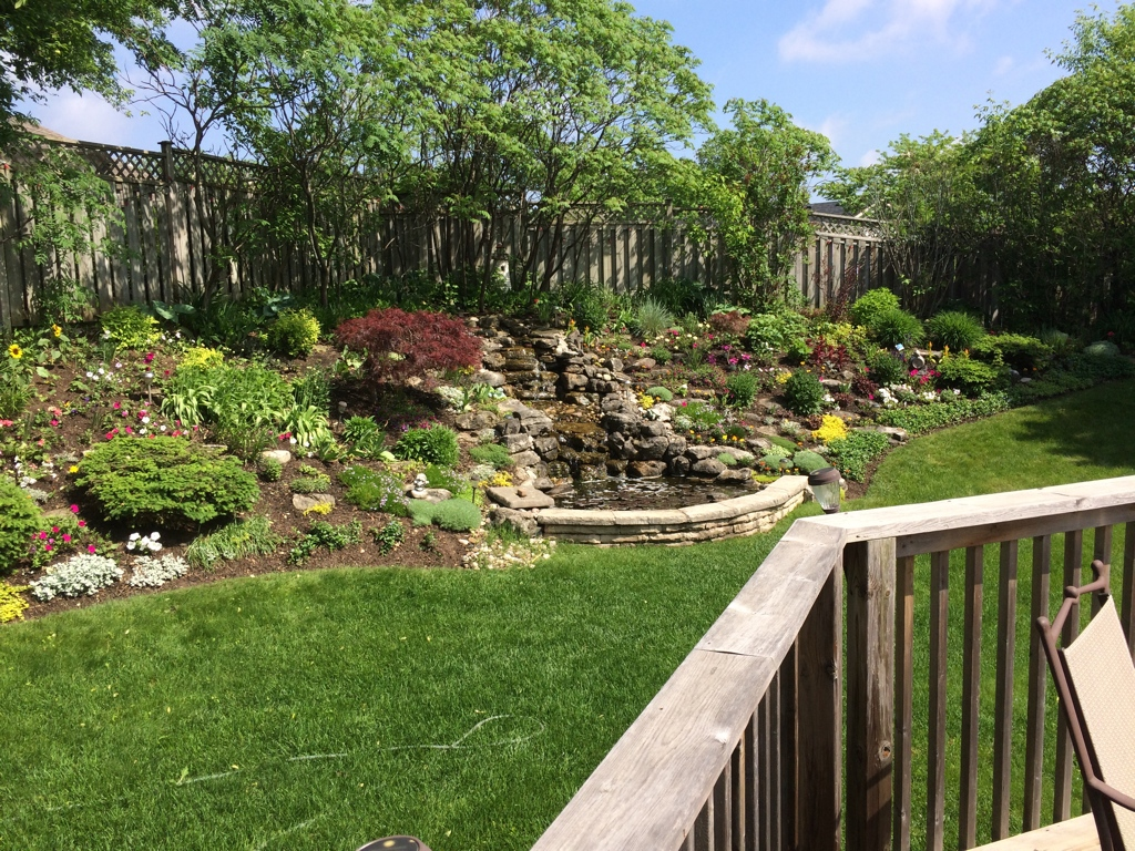 Home garden with small waterfall