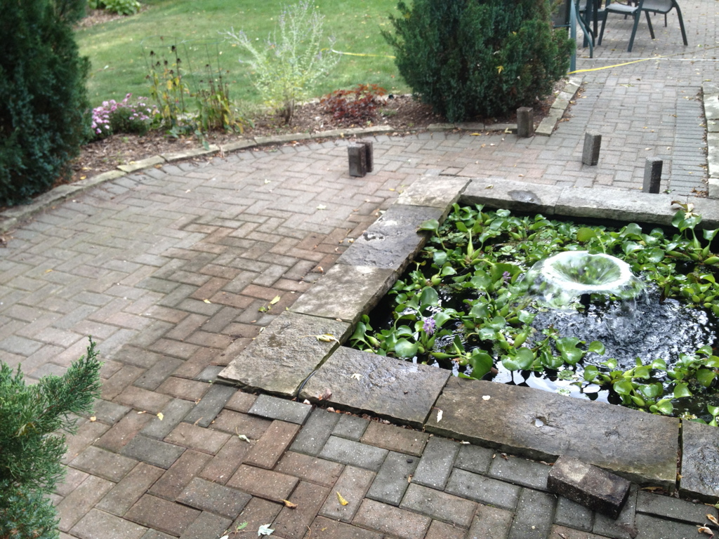 Brick walkway and square plant pond