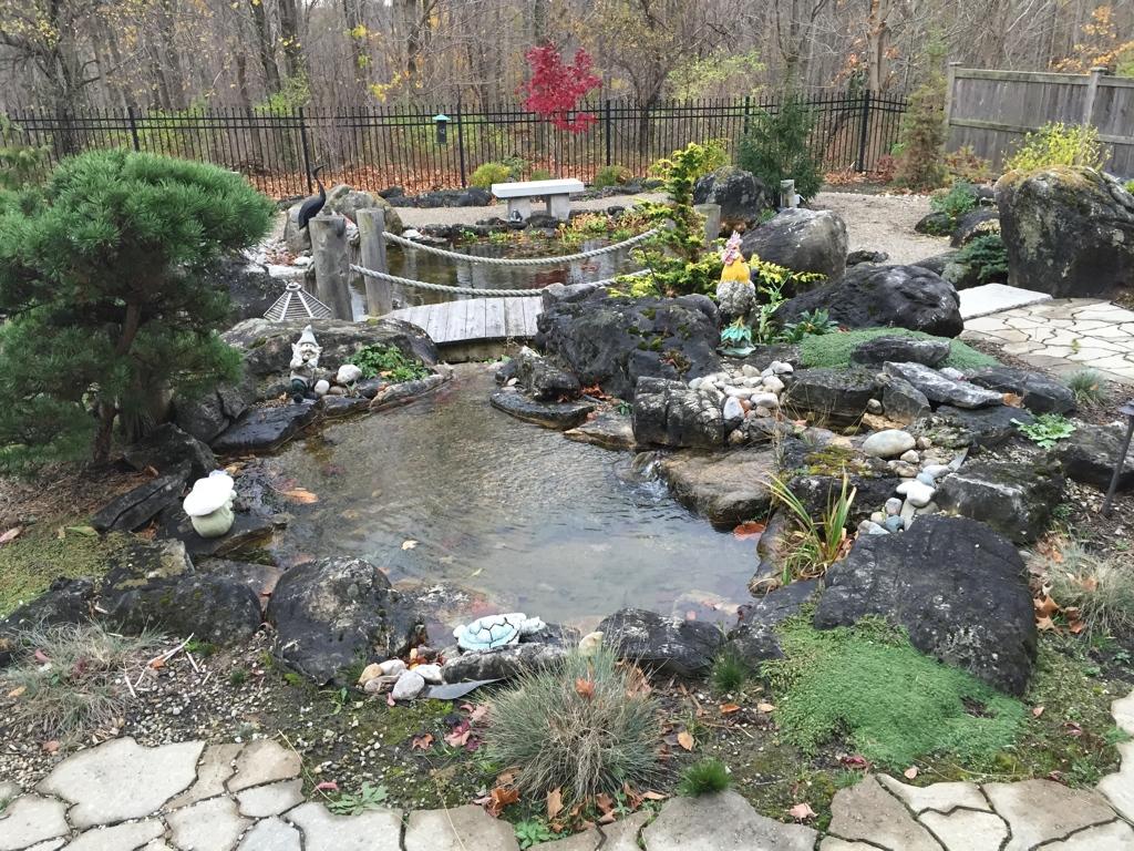 Pond with bridge