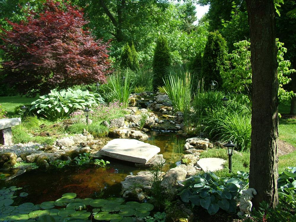 Home garden with stream
